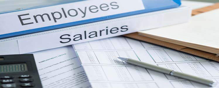 payroll management software india